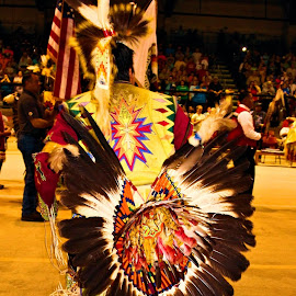 Native American man in costume by Terry Pfeffer - People Portraits of Men ( native, pow wow, american, costume, man )