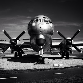 Old prop job by Nikki Chisolm - Transportation Airplanes (  )