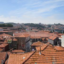 Telhados de Gaia by Lia Ribeiro - Buildings & Architecture Homes