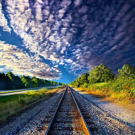 All The Way Home by Phil Koch - Transportation Railway Tracks ( vertical, photograph, yellow, leaves, love, sky, nature, tree, autumn, train, flower, orange, twilight, agriculture, horizon, portrait, environment, dawn, serene, trees, floral, wisconsin, natural light, railroad, phil koch, spring, photography, sun, rail, horizons, clouds, office, park, green, tracks, scenic, morning, shadows, wild flowers, field, red, blue, sunset, fall, peace, meadow, summer, sunrise, earth, landscapes )
