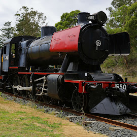 Old Noogee Loco by Jefferson Welsh - Transportation Trains