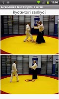 Screenshot of Aikido Test 2 kyu