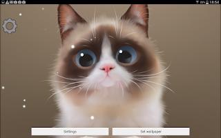 Screenshot of Shui The Kitten Lite