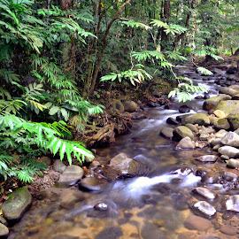river by Fadzlee Maula Fmn - Novices Only Landscapes ( nature, peace, nikon, slow shutter, river )