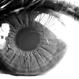 Geli's Eye by Chuy Ruiz - People Body Parts ( macro, black and white, pupil, bw, iris, close up, eye )