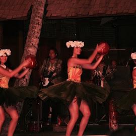 Luau by Patti Martin - People Musicians & Entertainers ( luau, entertainers, women, hawaii )