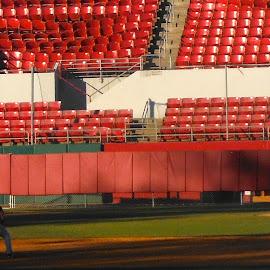 Alabama Baseball Fall Scrimmage by Brianne Cronenwett - Sports & Fitness Baseball ( baseball, pitcher, alabama, crimson tide, batter )