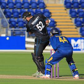 Bennett batting by John Davies - Sports & Fitness Cricket ( new zealand 'a', john davies, cricket, swalec stadium, sri lanka 'a', cardiff )