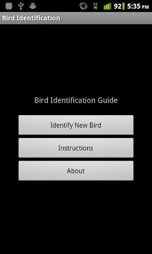 Bird Identification