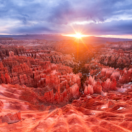 Bryce Canyon Peeking through by Zhouen Dong - Landscapes Travel ( bryce canyon hoodoos, overnight camping, photography, journeyinphotography, western united states, hiking, inspiration point, bryce canyon sunrise, camping, american, journey in photography, bryce, southwest, sun set, united state, canyon, canvas, day hikes, zhouen dong, in, nation park, journeyinphotography.com, western america, hoodoo, hoodoos )