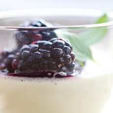 Green Tea & BasilPanna Cotta with Honeyed Blackberries