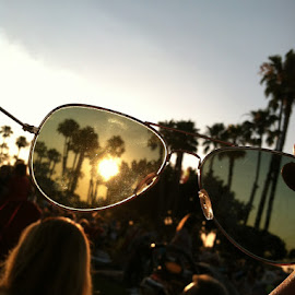 Sunset by Rebekah Doar - Artistic Objects Clothing & Accessories ( concert, palm tree, california, sunset, sunglasses )