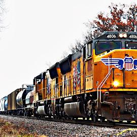 Freight Train Daily Run by Tricia Scott - Transportation Trains ( railway, engine, railroad, rail, freight, train, tracks )