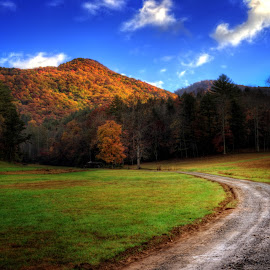 Mountain Road by Greg Mimbs - Landscapes Mountains & Hills ( clouds, photograph, grass, colorful, green, dirt road, road, leaves, mountain road, greg mimbs, north carolina, cherokee county, wnc, western north carolina mountains, pasture, mountains, sky, color, nc, blue, shadow, fall, trees, light )