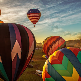 BalloonFest Takeoff by Carol Plummer - Transportation Other ( hot air, take off, transportation, hot air balloons, balloons,  )