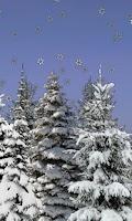 Screenshot of Winter Snow Trees 3D Trial LWP