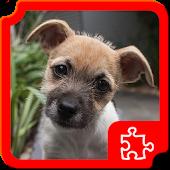 Puppies Puzzles APK for Nokia