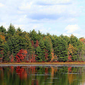 Autumn Lakeside, New Hampshire by Ken Miller - Landscapes Waterscapes ( waterscape, autumn, lake, autumn colors, landscape, pond, new hampshire, , fall, color, colorful, nature )
