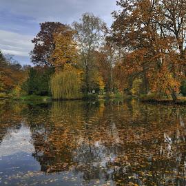Autumn reflection  by Zeljko Kliska - Landscapes Waterscapes ( park, autumn, zagreb, waterscapes,  )