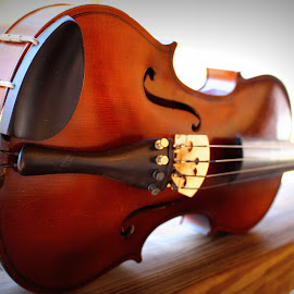 Long Reach by Gwen Short - Artistic Objects Musical Instruments ( afteroz, violin, wood, vintage, antique, fiddle )