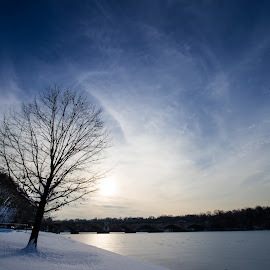 Winter 2014 by Calvin Tsai - Landscapes Prairies, Meadows & Fields ( sky, winter, tree, color, snow, kelly drive, pennsylvania, philadelphia, landscape, river )