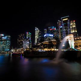 Singapore City  by Kel Vin - Buildings & Architecture Public & Historical ( merlion, night, view, singapore, city,  )