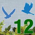 12星鳥占い:奇跡の良縁鑑定!「これがあなたの運命の人よ!」 icon