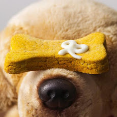 Peanut Butter and Pumpkin Puppy Treats