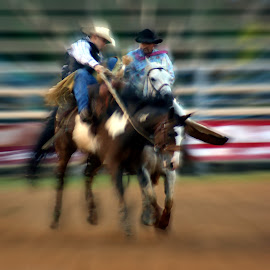 A wild ride by Paul Brumit - Sports & Fitness Other Sports ( horses, cowboys, rodeo, sports, people )