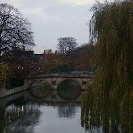 Cambridge Universities at Dawn by Helen Roberts - City,  Street & Park  Historic Districts