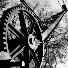Evolution of the Wheel by Michael English - Novices Only Objects & Still Life ( sacramento, industrial, black and white, california, travel )
