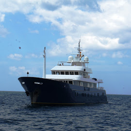 MY Northern Sun by Ilse Gibson - Transportation Boats ( motorcruiser, cruiser, superyacht, motorboat, luxury yacht, motoryacht )