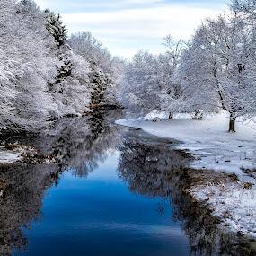 Winter Wonderland  7004  by Karen Celella - Landscapes Travel ( reflection, winter, snow, white, landscape, cold,  )