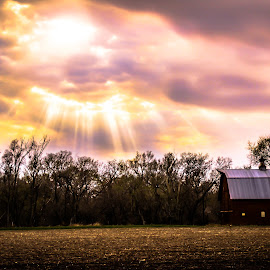 Sunbeams in a field by Mason Bletscher - Landscapes Sunsets & Sunrises ( field, barn, sunset, sunbeam, sun )