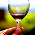 vinOrganica California icon
