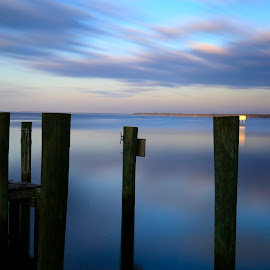 Dock Pilings by Matt Padgett - Landscapes Waterscapes