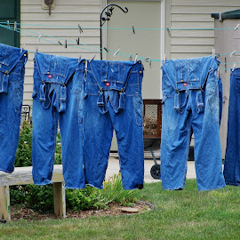 Bibs on the line by Erin Czech - Artistic Objects Clothing & Accessories ( clothespin, pants, clothesline, jeans, denim, overalls )