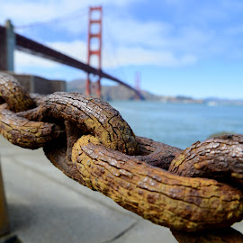 The Scars of Time by Edward Grylich - City,  Street & Park  Historic Districts ( time, golden gate, san francisco )