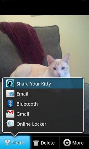 CatShare Pro