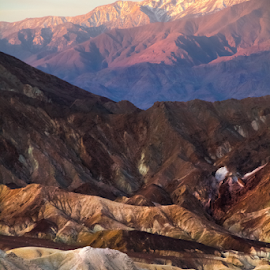 Real Orton by David Hellard - Landscapes Mountains & Hills ( amargosa, death valley, hills, point, zabriskie, mountain, range, valleys, california, valley, morning, peaks )