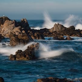 Morning Break by Greg Varney - Landscapes Waterscapes ( tides, monterey, waves, santa cruz, beach, sunrise, harbor seals, rocks )