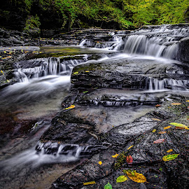 Late Sumer at Filmore Glen State Park  by Michael Tracy - Landscapes Waterscapes ( nature, filmore glen, gorge, fall, waterfall, landscape )