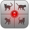 Human-to-Cat Translator APK for Ubuntu