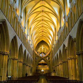 Inside Wells Cathedral by Zoot The-Tog - Buildings & Architecture Places of Worship ( symmetrical, church, holy, light, depth )