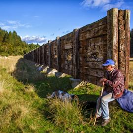 Old shepherd by Stanislav Horacek - Landscapes Prairies, Meadows & Fields