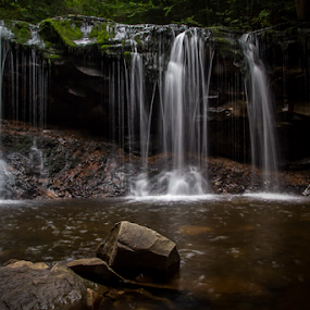 Oneida Falls, 13' by Michael Sharp - Nature Up Close Water ( water, waterfalls, pa, state park, waterfall, falls, moss, pennsylvania, oneida, ricketts glen )