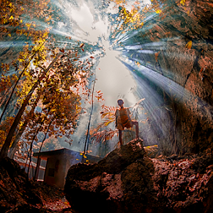 1 jungle filter.jpg