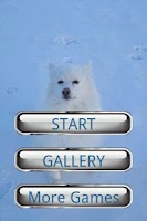 Screenshot of Dog Puzzle: American Eskimo Do
