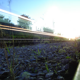 train lights by Renco Gotovac - Abstract Light Painting ( railway, grass, train, painting, light )