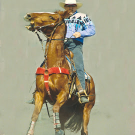Whoa big fella by Mike O'Connor - Sports & Fitness Rodeo/Bull Riding ( stop, riding, whoa, horse, rodeo, western, equestrian )